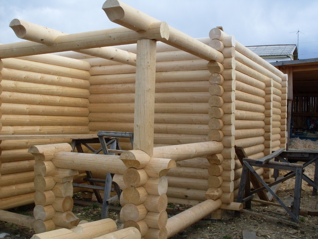Выбор древесины для стройки